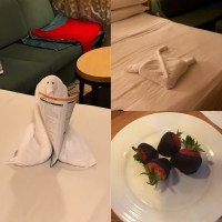 Cruise Towel Art