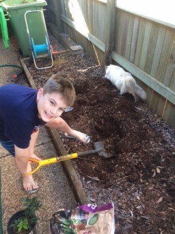 J helping me with the murraya plant this weekend.