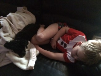 T and his faithful dog again asleep in the lounge at 3am.
