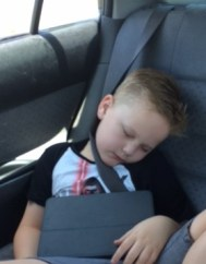 T all tuckered out in the car - finally relaxed but exhausted!