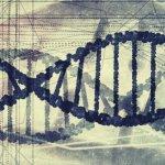 evoluția biologică