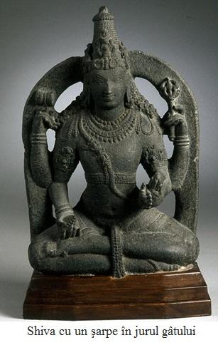 8.5.7.1 Shiva cu un şarpe în jurul gâtului