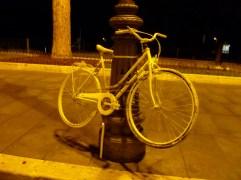 fotoP1060752