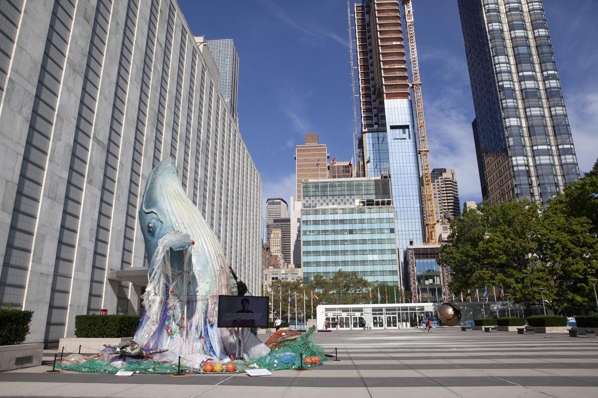 Global Ocean Treaty negotiations at the UN – Greenpeace response