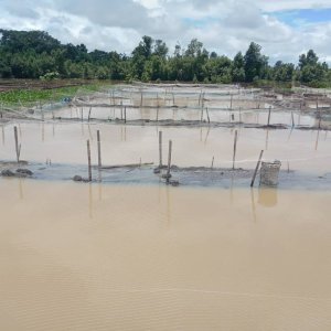 Ogbe-Ijoh fish farm flood victims cries out for help