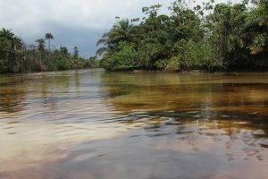 Environmentalist berates Agip's response to oil leak in Brass – The Liberator