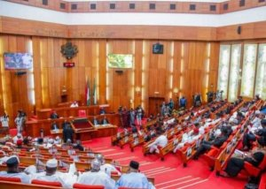 Senate commences public hearing on Social Media Bill – The Liberator