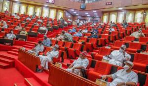 Special Report: Despite underfunding of existing institutions, Nigerian lawmakers want 200 new universities, colleges