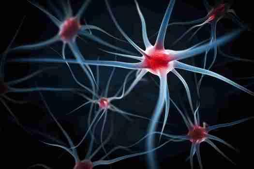 rôle du cerveau et de la conscience dans le travail de rééducation au piano