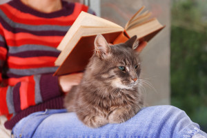 reviews reading with cat