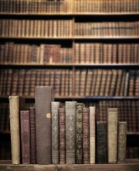 research books for Elizabeth Rolls
