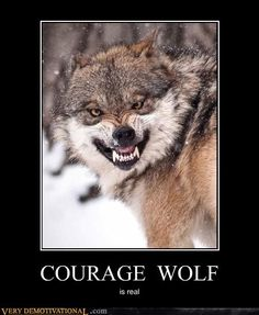 snarling courage wolf
