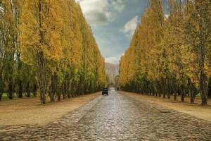road to Versailles
