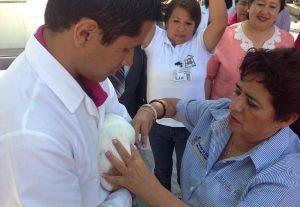 24-vacunar-a-tus-perros-y-gatos