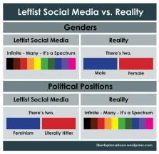 infographic, leftism, social media, gender identity, politics, political beliefs, feminism, gender, graphic design