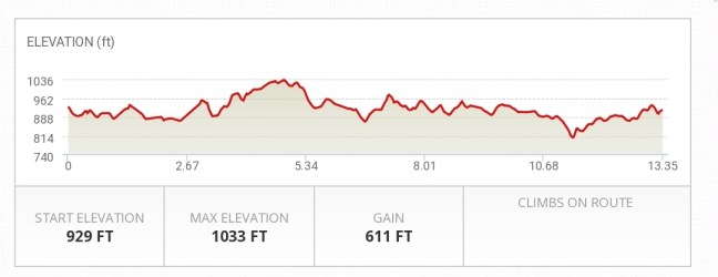 2020 Half Marathon elevation profile