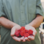 """Hottest Chili Grower Raises Eyebrows Of London Government With """"Carolina Reaper"""""""