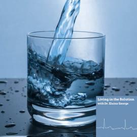 Steven Sedlmayer Water Digestion FEATURED