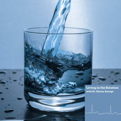 Steven Sedlmayer Water Digestion FEATURED