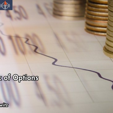 Options Investment Risk Management