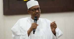 Muhammadu Buhari, Shugaba Kasa
