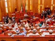 Senate Raises Fresh Hopes On Petroleum Bill