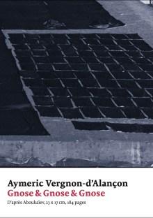 Gnose & Gnose & Gnose - Aymeric Vergnon-d'Alançon - art&fiction
