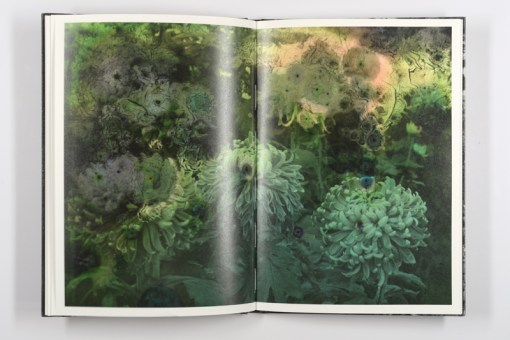 Mold is Beautiful - Luce Lebart - Editions Poursuite