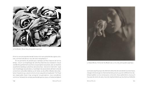 Histoires sociales de l'art – Une anthologie critique – Volume 2