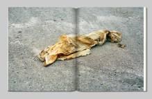 Illusive Prosody - Alex Beaurain - Alt Editions