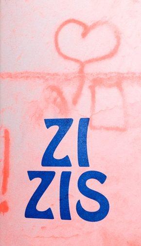 zizis-actes-nord