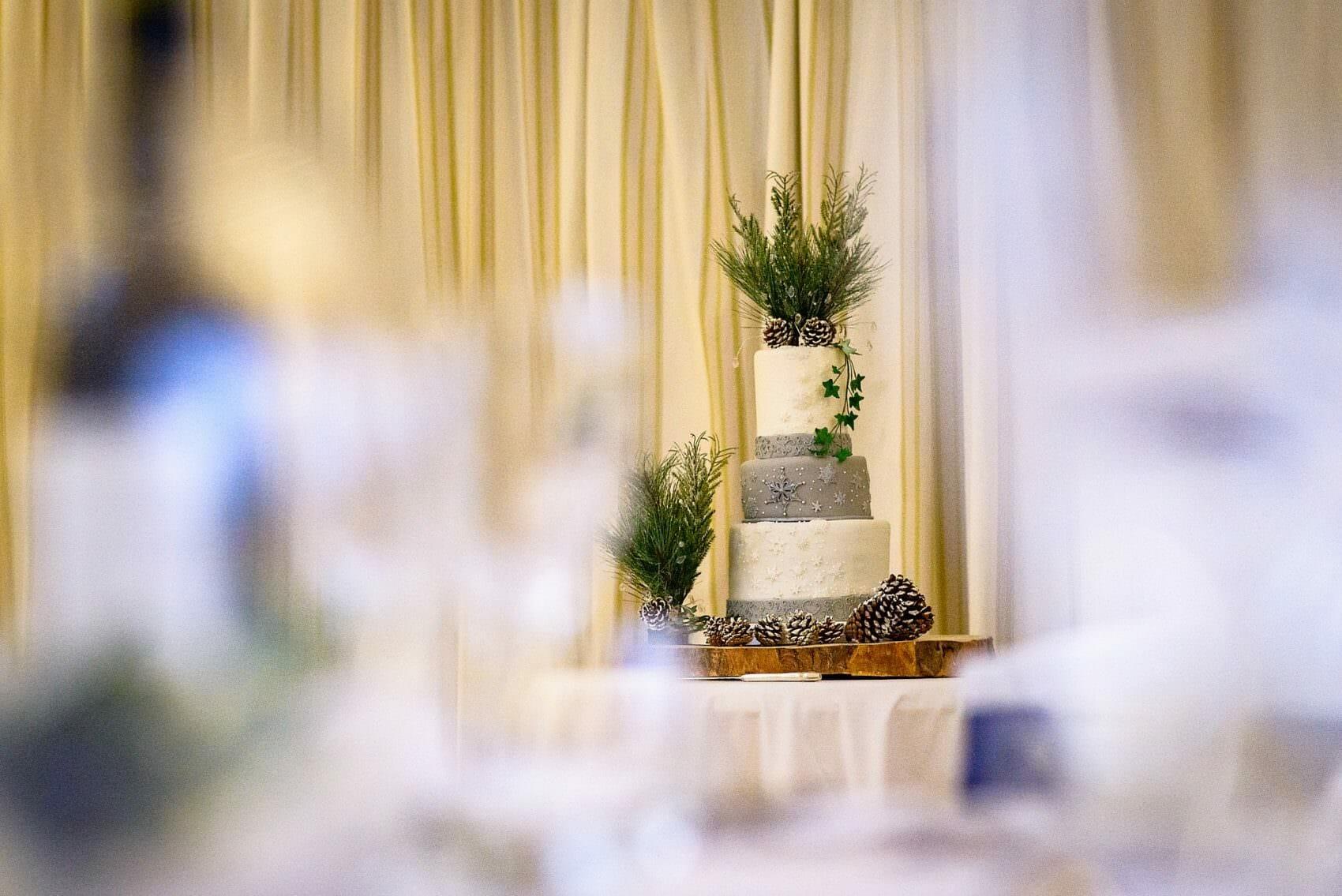 Larmer-Tree-wedding0031