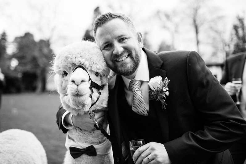 Larmer tree wedding photography with Alpacas and singing waiters