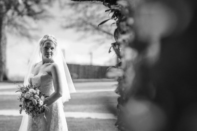 Larmer Tree Gardens wedding photographer in Wiltshire