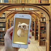 What Pokémon can you catch at a library?
