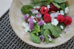 raspberry goat cheese spinach salad recipe | librarian style