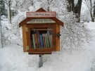 World's Smallest Free Library
