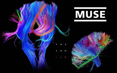 The-2nd-Law-muse-31724776-1280-800