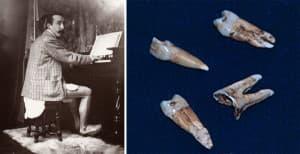 Gauguin alsógatyában zongorázik, jobbra a fogai.