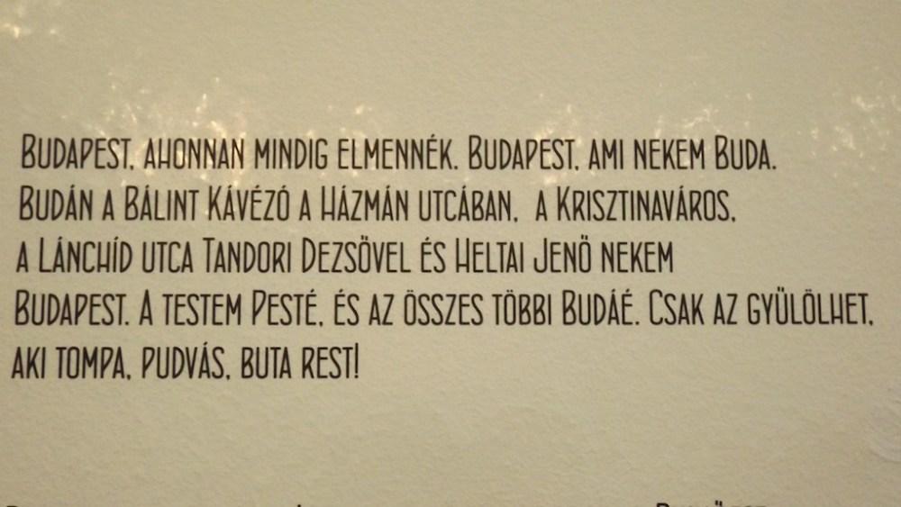 Egy estés kiállítás az utálva szeretett Budapestről - Herbert Anikó interjú