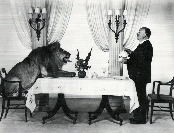Alfred Hitchcock serving tea to the MGM Lion. [1957]