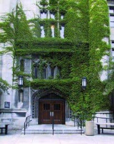 Reneszánsz Társaság Chicago