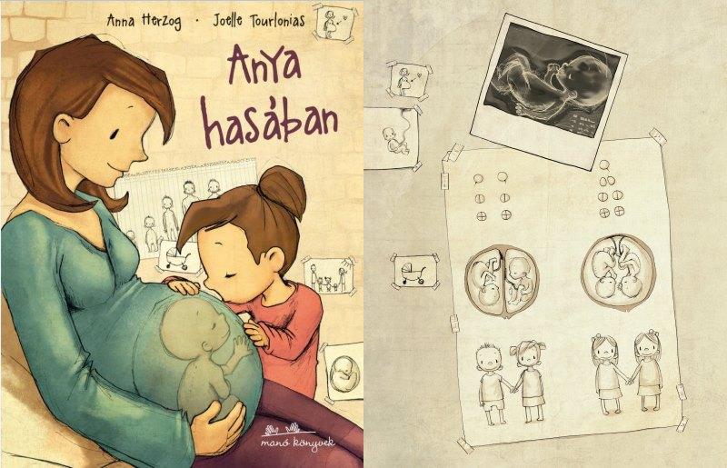 A könyv címlapja - Az egy- és kétpetéjű ikreket bemutató illusztráció