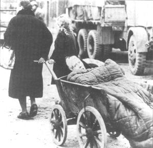 German Victims of Allied Ethnic Cleansing