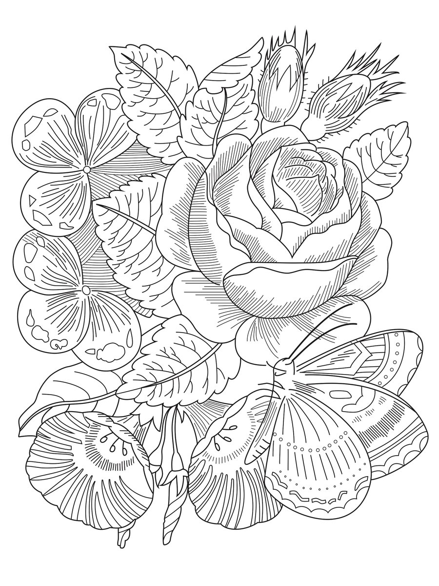 Michigan State University Libraries Coloring Sheet Color Our