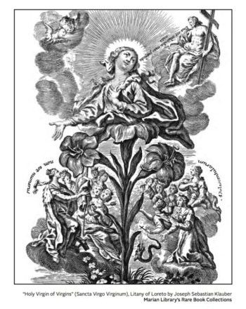 Marian Cover