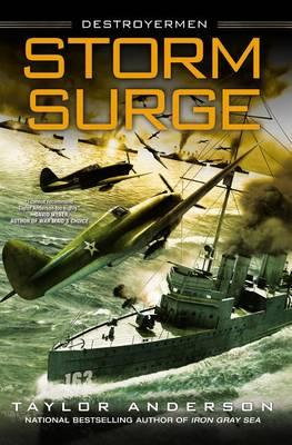 Cover of Storm Surge