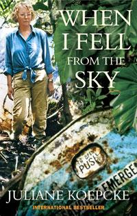 Cover of When I Fell From the Sky