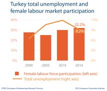Unemployment and female labour market - Turkey