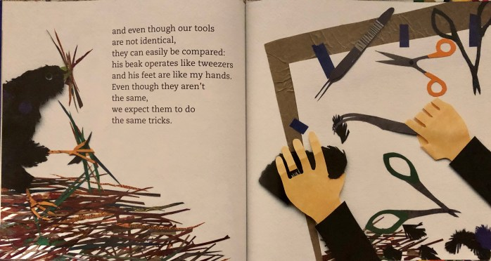 Double page spread found in the picture book Birds of a Feather: Bowerbirds and Me by Susan L. Roth. A bowerbird collects material with it's beak and claws while an artist uses her hands and scissors to work with materials.